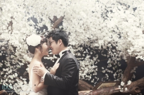 korean wedding photo_kg8559
