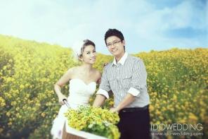 korean wedding photo_mw6619