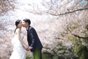 koreanweddingphoto_7487 copy
