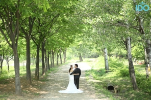 koreanweddingphotography_827A3379 copy