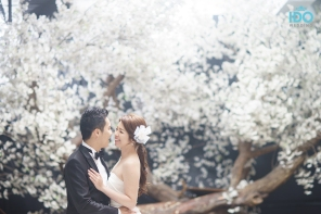 koreanweddingphotography_DSC07737