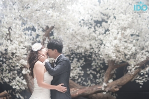 koreanweddingphotography_DSC09129 copy