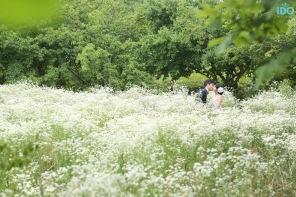 koreanweddingphotography_H13A9983 copy