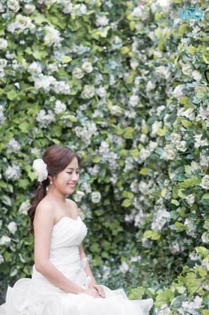 koreanweddingphotography_IMG_8691