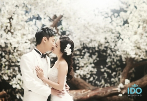 koreanweddingphoto_idowedding 2138