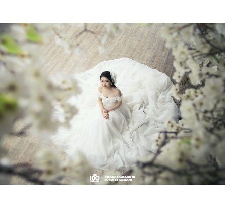 Koreanpreweddingphotography_003