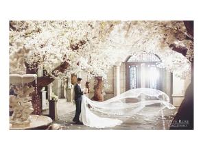koreanpreweddingphotography_50
