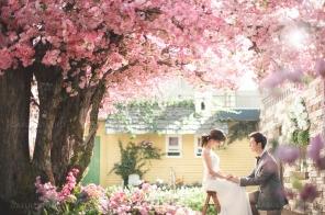koreanpreweddingphotography_idowedding 089