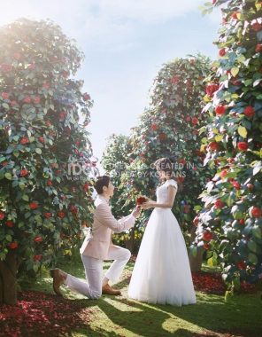 koreanpreweddingphotography_idowedding -25