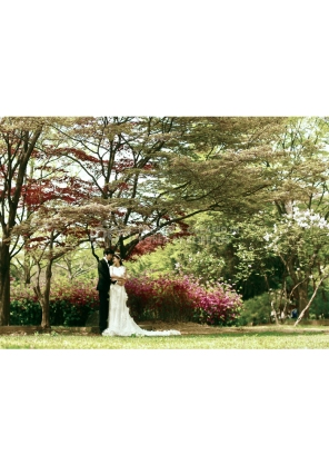 koreanpreweddingphotography_idowedding 89 도산
