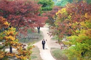 koreanpreweddingphotography_idowedding 선유도 11
