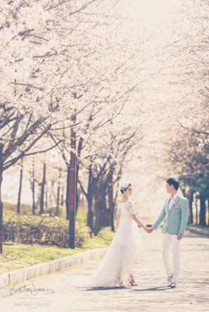 koreanpreweddingphotography_idowedding 선유도벚꽃 03