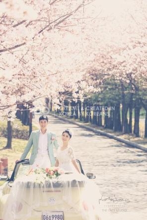 koreanpreweddingphotography_idowedding 선유도벚꽃 04
