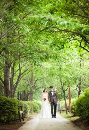 koreanpreweddingphotography_idowedding 선유도여름 15