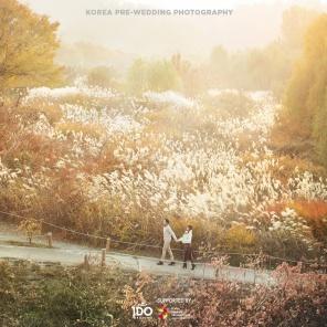 idowedding_koreanpreweddingphoto 1192